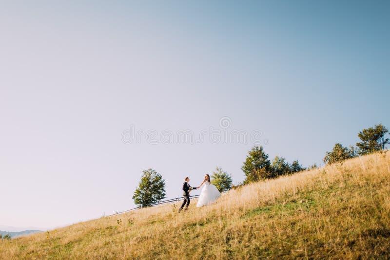 Punto di vista posteriore della coppia sposata che cammina nel prato giallo all'estate fotografie stock