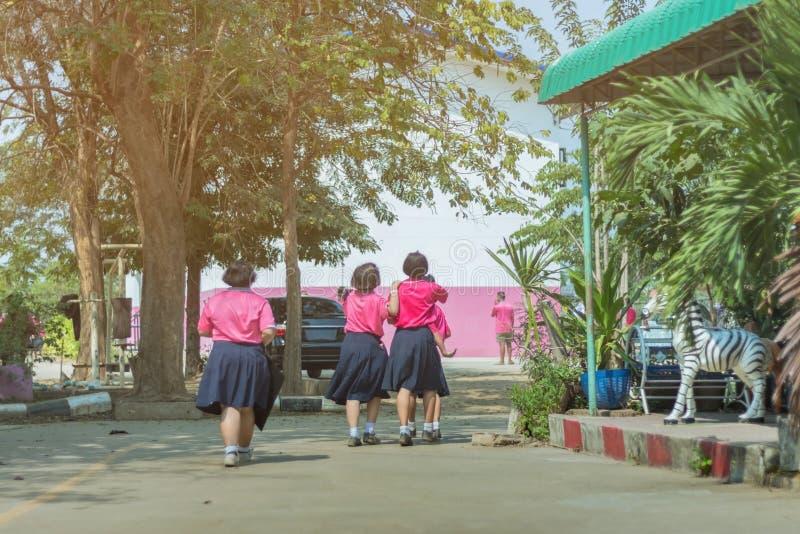 Punto di vista posteriore delle studentesse primarie di felicit? in camicia rosa e nella passeggiata blu della gonna alle aule fotografia stock libera da diritti