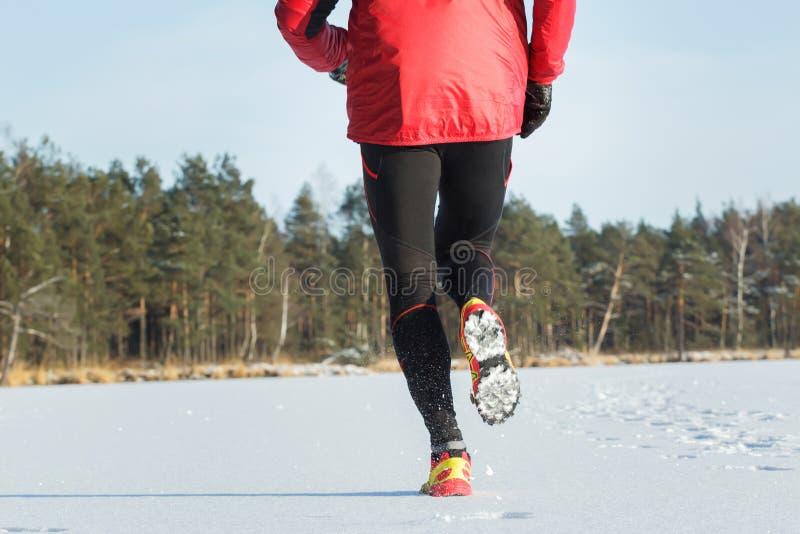 Punto di vista posteriore dello sportivo corrente durante la gara di corsa campestre all'aperto nella foresta di inverno fotografia stock libera da diritti