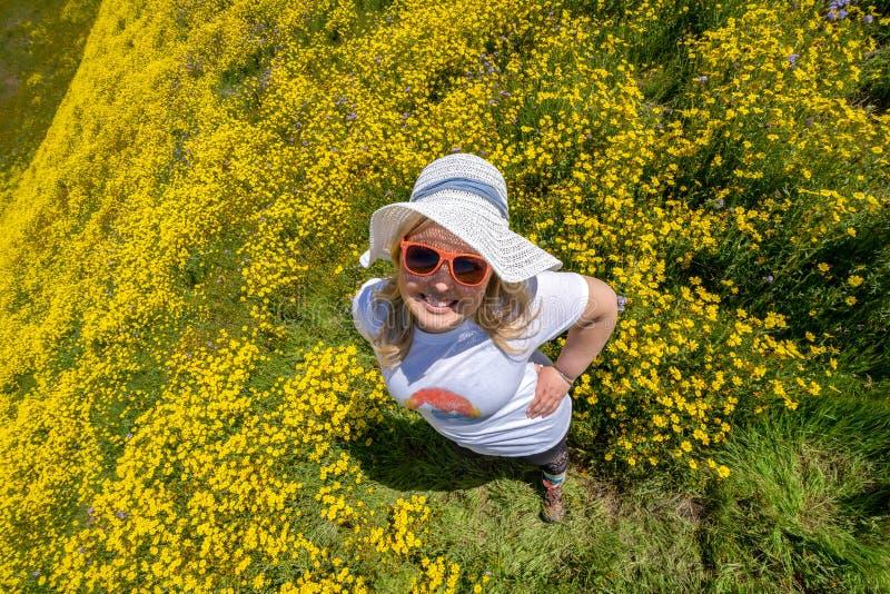 Punto di vista sopraelevato di una donna in un campo giallo del wildflower che dura facendo un'escursione abbigliamento e un capp fotografia stock libera da diritti