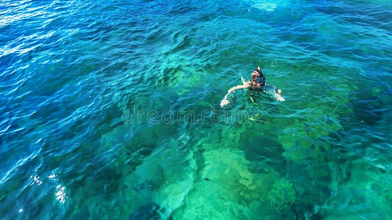 Punto di vista superiore aereo della donna che si immerge da sopra, nuoto dello snorkeler della ragazza in un'acqua di mare tropi immagini stock libere da diritti