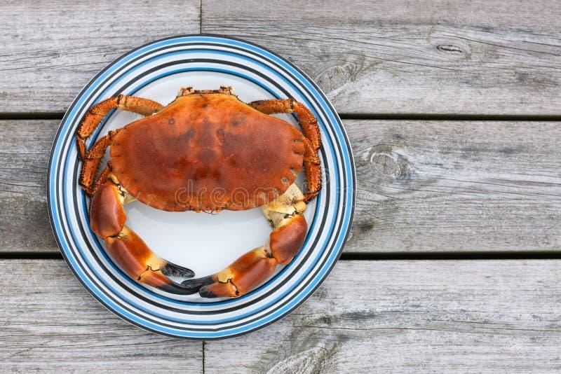 Punto di vista superiore cucinato del granchio sul piatto bianco immagine stock libera da diritti