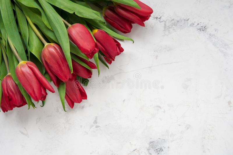 Punto di vista superiore dei tulipani rossi con lo spazio della copia fotografie stock
