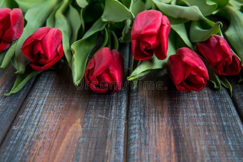 Punto di vista superiore dei tulipani rossi con lo spazio della copia immagini stock