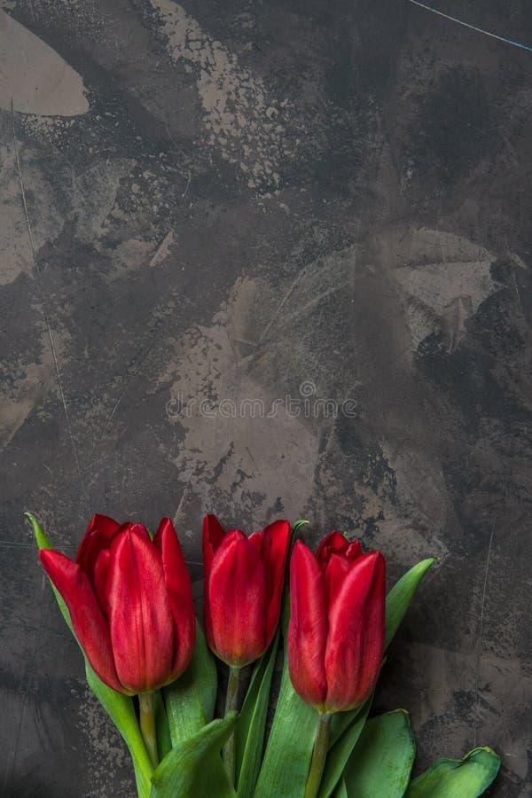 Punto di vista superiore dei tulipani rossi con lo spazio della copia fotografia stock