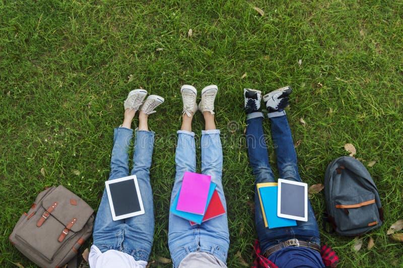 Punto di vista superiore del gruppo di studenti che si siedono insieme nel giardino fotografia stock libera da diritti