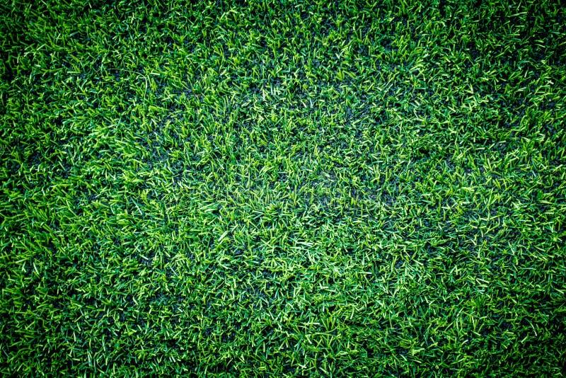 Punto di vista superiore dell'erba di addestramento di calcio dell'interno fotografia stock libera da diritti