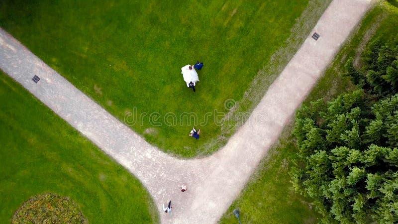 Punto di vista superiore della sposa e dello sposo che camminano sul prato inglese verde azione Passeggiata di nozze sul prato in immagine stock