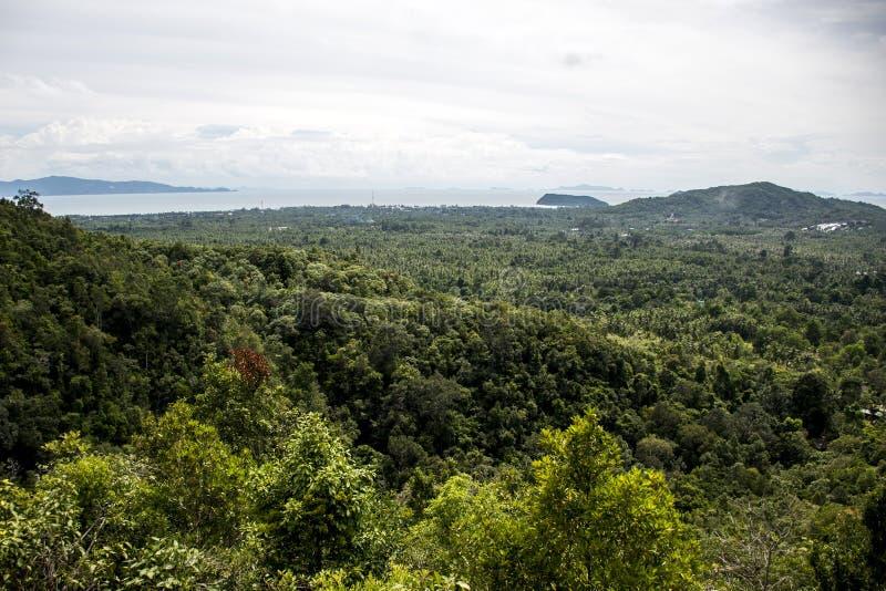 Punto di vista tropicale Koh Phangan Thailand di Domesila della foresta pluviale della linea costiera di vista immagini stock libere da diritti