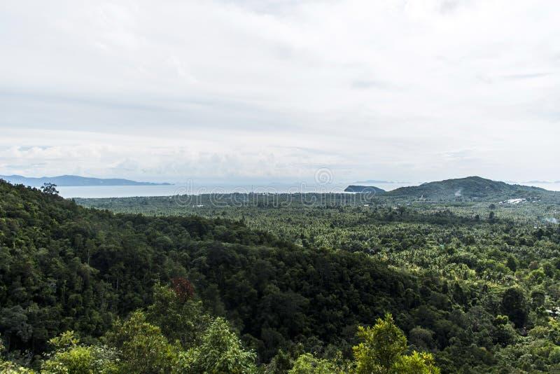 Punto di vista tropicale Koh Phangan Thailand di Domesila della foresta pluviale della linea costiera di vista immagine stock