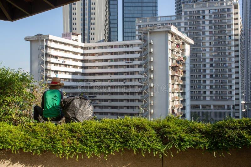 Punto di vista di un orticoltore, sarchiatura e piante di guarnizione immagini stock