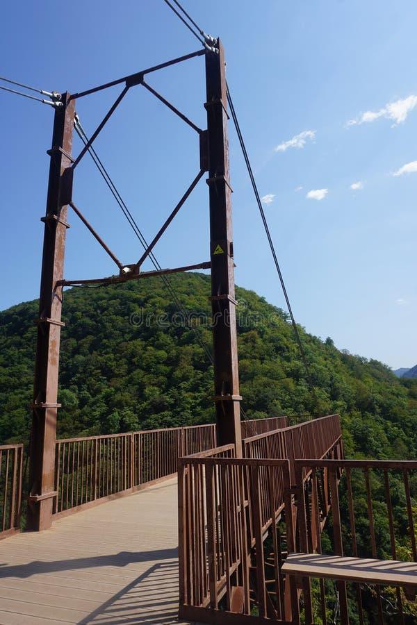 Punto principal de opinión del barranco de Okatse fotografía de archivo libre de regalías