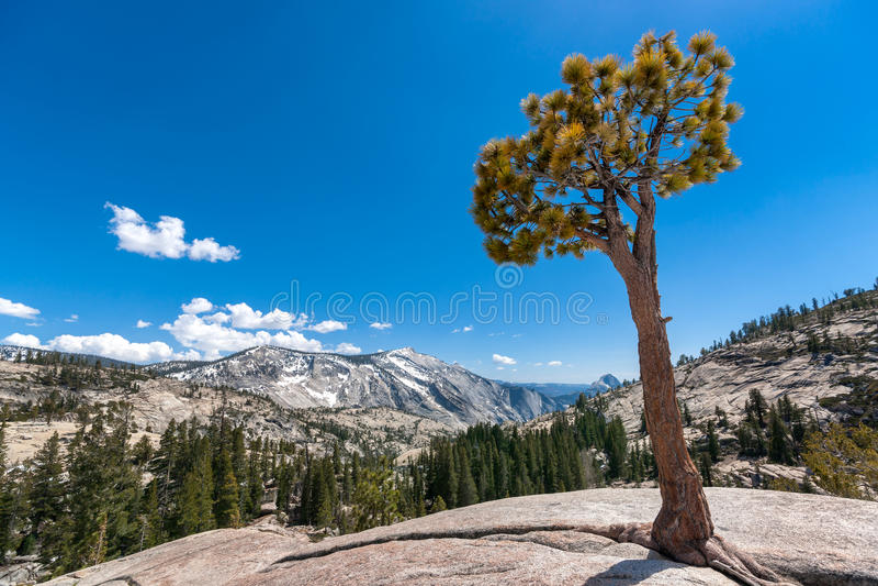 Punto Yosemite di Olmsted fotografie stock libere da diritti