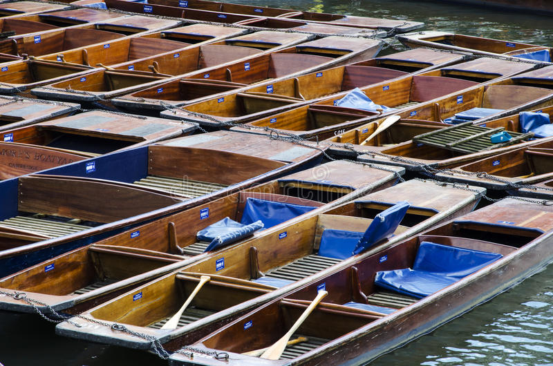 Punts in River Cam 1. A lot of punts tied together on a dock. This is located in river Cam that runs through the city of Cambridge royalty free stock images