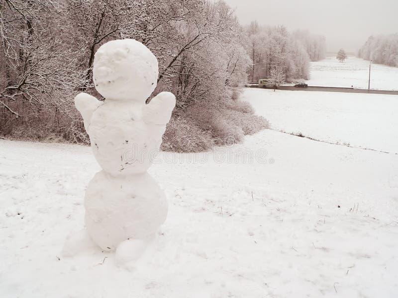 Download Pupazzo di neve immagine stock. Immagine di ghiaccio, natale - 7323359
