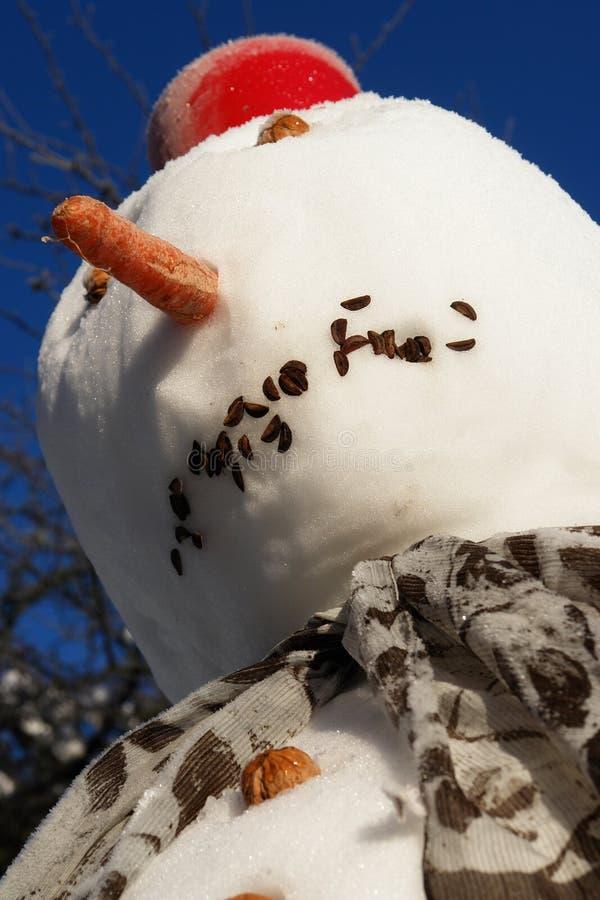 Download Pupazzo di neve fotografia stock. Immagine di snowman - 7324400