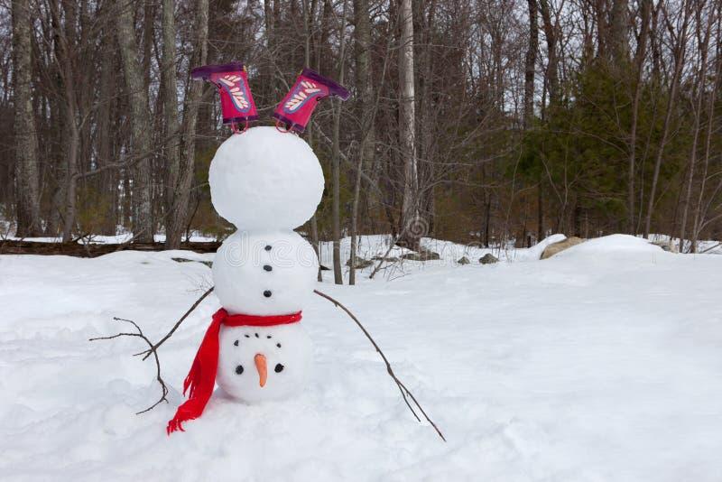 Pupazzo di neve capovolto fotografie stock