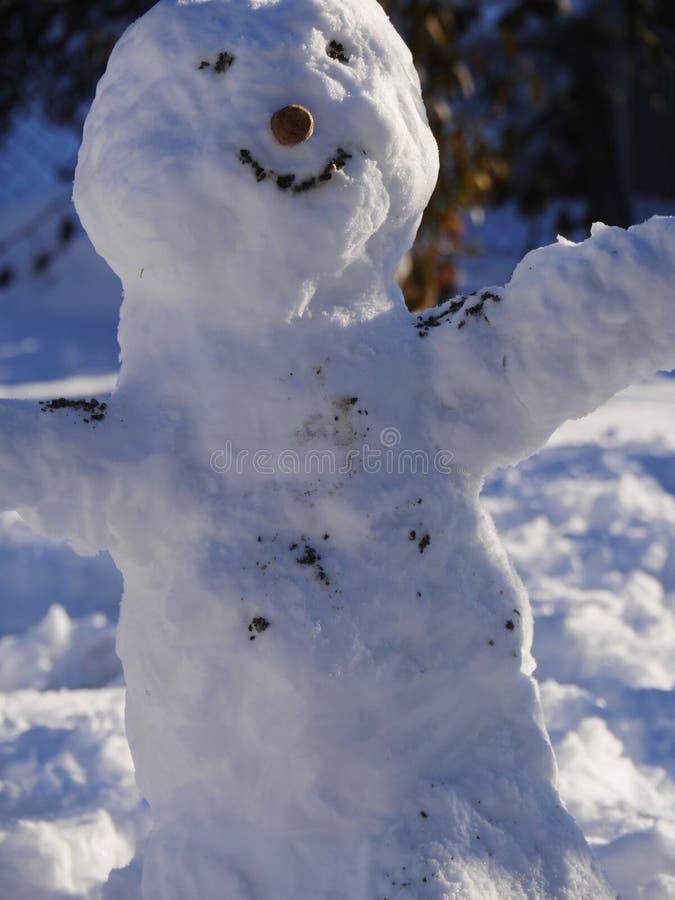 Pupazzo di neve della costruzione immagini stock