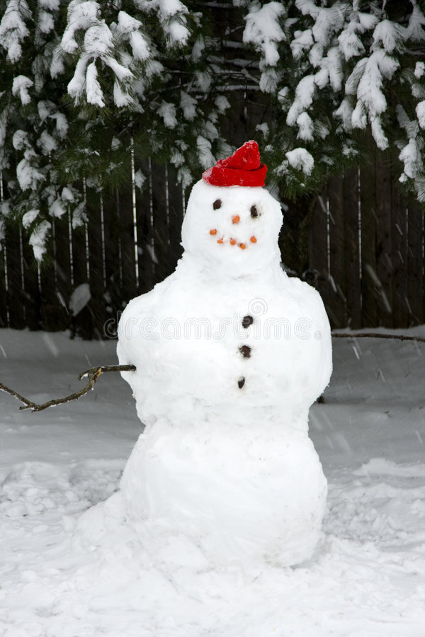 Pupazzo di neve durante la tempesta della neve immagini stock