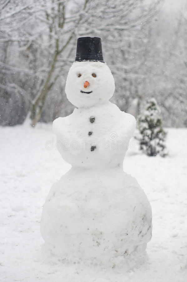 Pupazzo di neve silenzioso fotografie stock