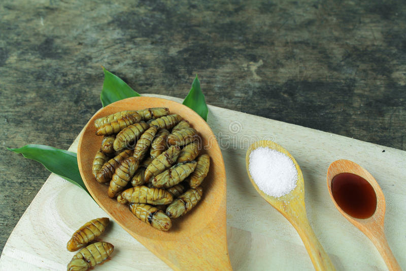 Pupe del baco da seta, alimento asiatico fotografia stock libera da diritti