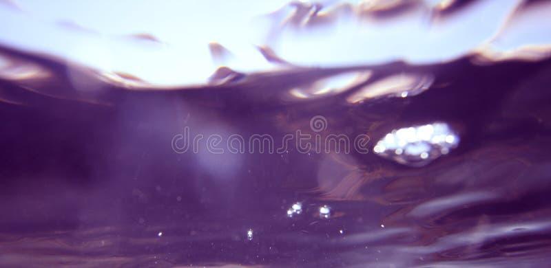 Puple subaquático fotografia de stock royalty free