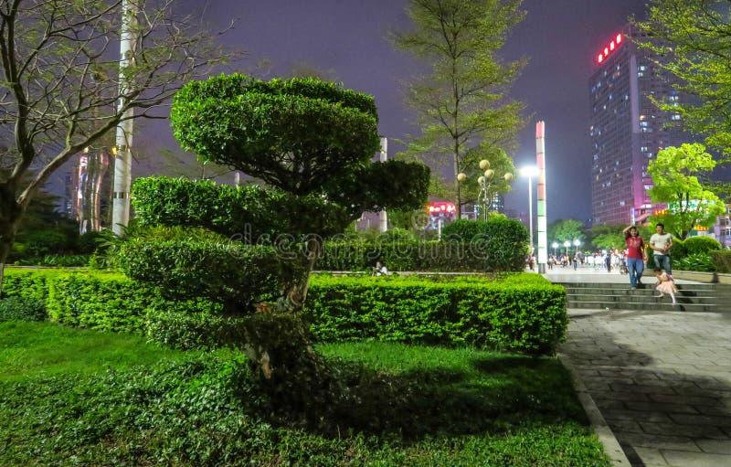 Puplic parkerar ner staden Shenzhen Södra Kina royaltyfria foton