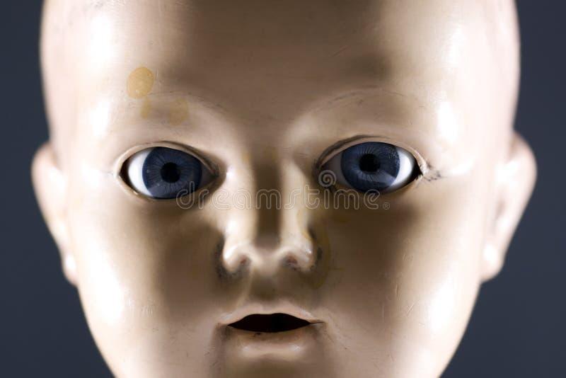Puppegesicht stockfotografie