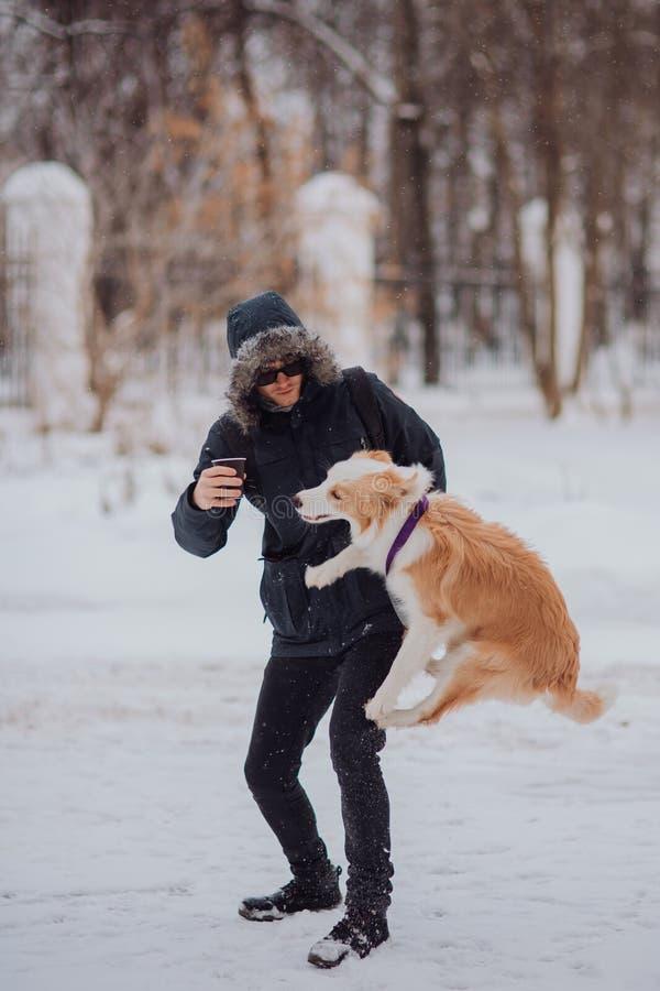 Puppey sautant border collie de chien de formation d'homme en hiver Jour de chute de neige photographie stock