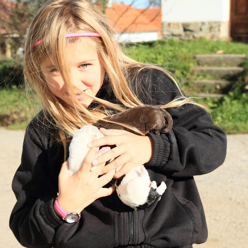 Puppies holded in kids hands. Three little puppies holded in hands of a smiling little blond girl - hairy kid dressed in black pull stock photo