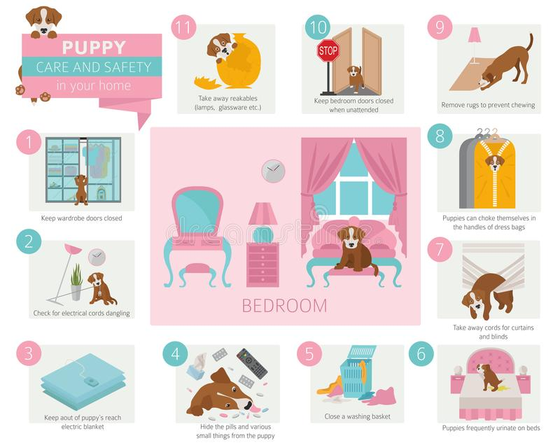 Puppy care and safety in your home. Bedroom. Pet dog training in stock illustration