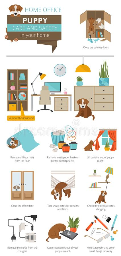 Puppy care and safety in your home. Home office. Pet dog training infographic design royalty free illustration