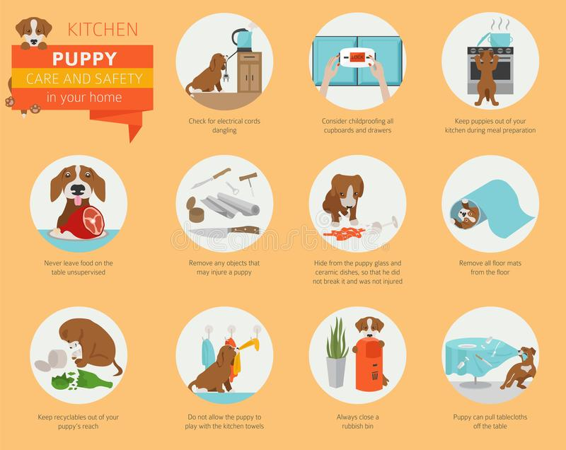 Puppy care and safety in your home. Kitchen. Pet dog training in stock illustration