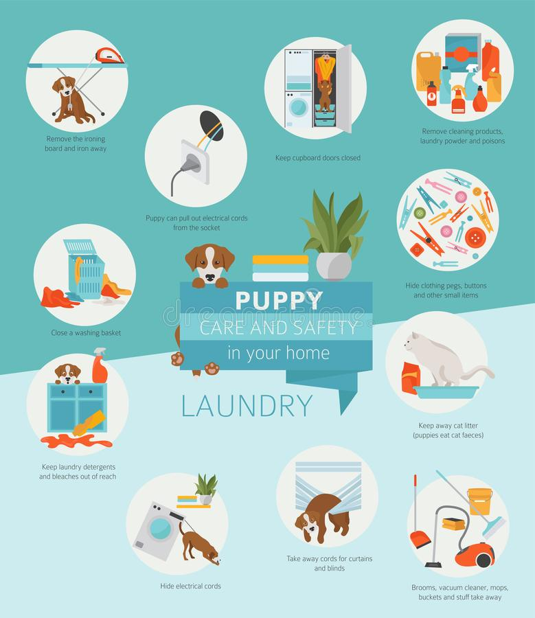 Puppy care and safety in your home. Laundry. Pet dog training in vector illustration