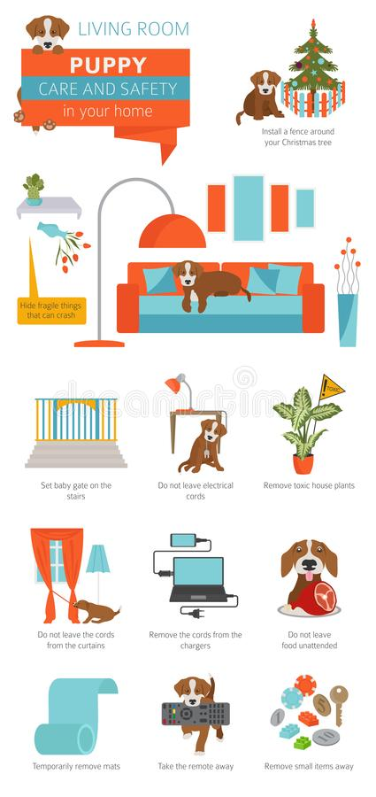 Puppy care and safety in your home. Living room. Pet dog training infographic design royalty free illustration