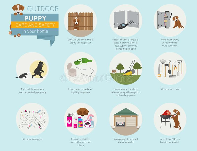 Puppy care and safety in your home. Outdoor. Pet dog training in vector illustration