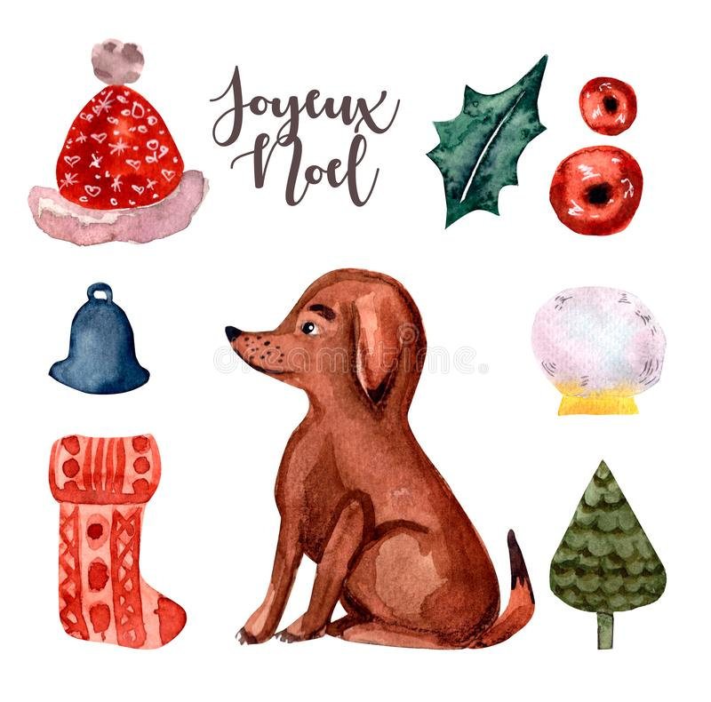 Puppy, dog, Brown watercolor and set Merry Christmas. Cute puppy, watercolor illustration isolated on white background.Christmas set: hat santa, berries, sock royalty free illustration