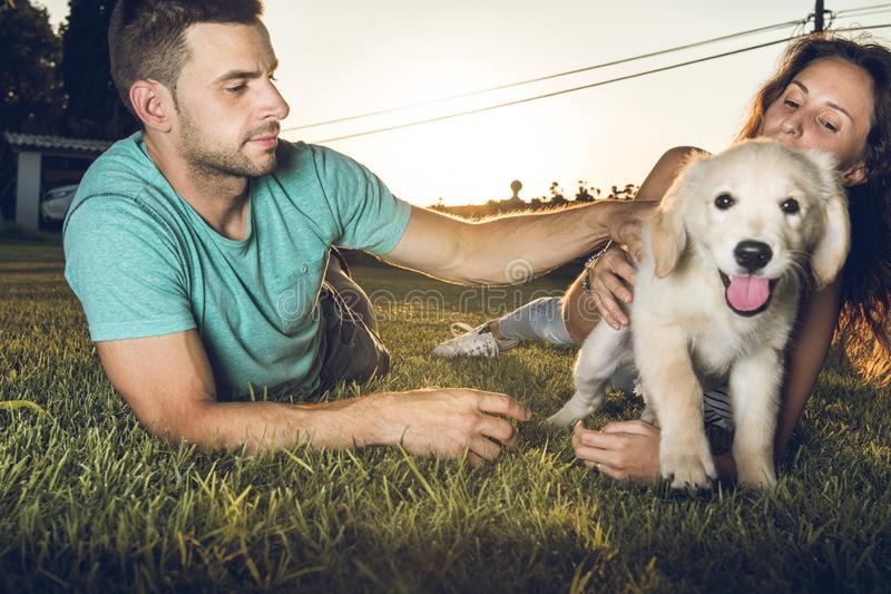 Puppy dog next to a couple of boyfriends. Concept of love between dogs and people royalty free stock images