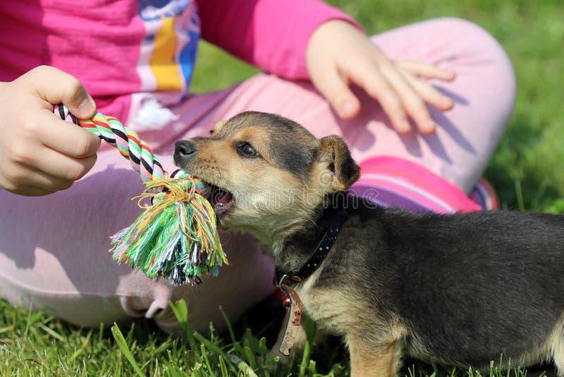 Puppy en kindspel met kabel royalty-vrije stock fotografie