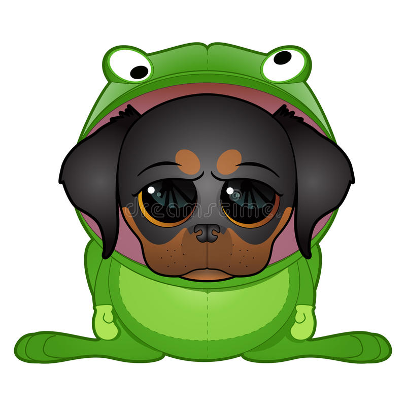 Download Puppy In Frog Costume Stock Photo - Image: 21788170