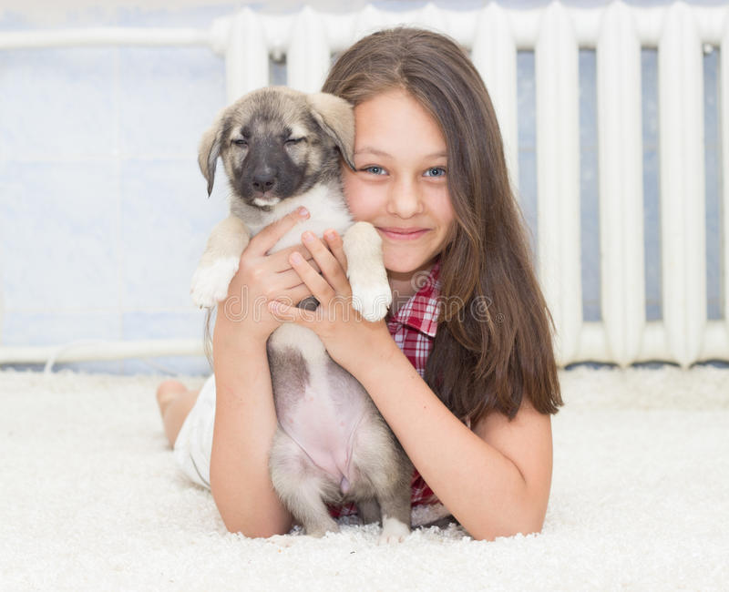 Puppy and girl. A Puppy and a girl stock images