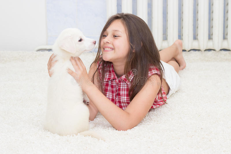 Puppy and girl. A Puppy and a girl stock photos