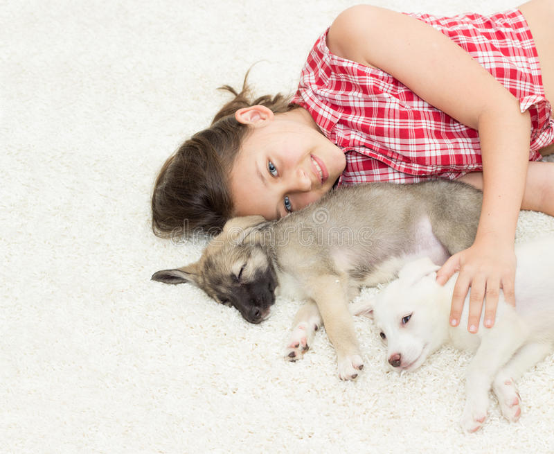 Puppy and girl. On carpet stock image