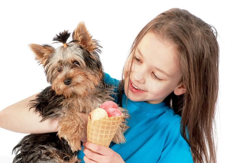 The puppy and the girl eating ice-cream. Isolated on white stock images