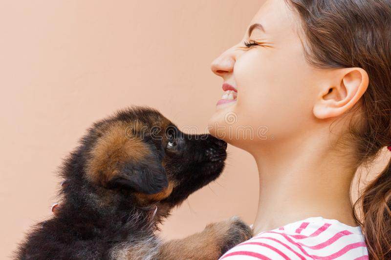 Puppy is giving a kiss to its girl owner.  stock photo