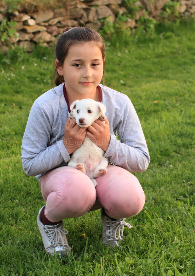 Puppy holded in kids hands. White little puppy holded in hands on knees of a little brunette girl in grey and pink stock photography
