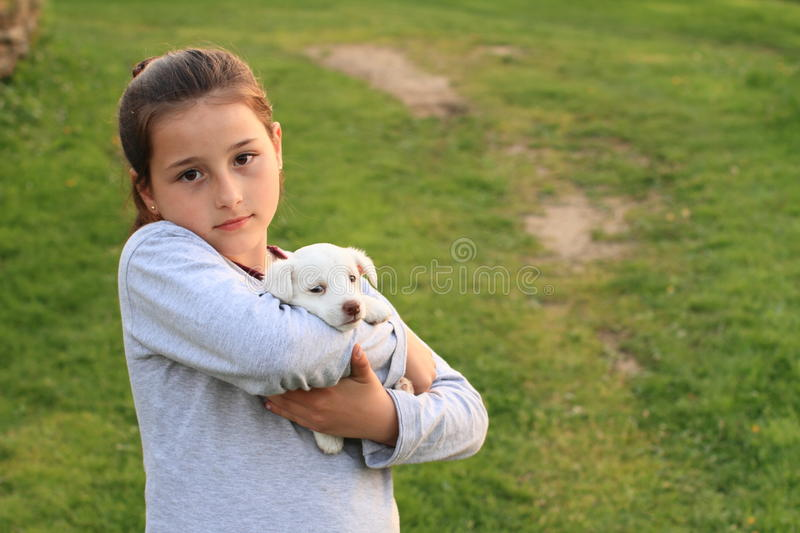 Puppy holded in kids hands. White little puppy holded in hands of a little brunette girl in grey royalty free stock photography