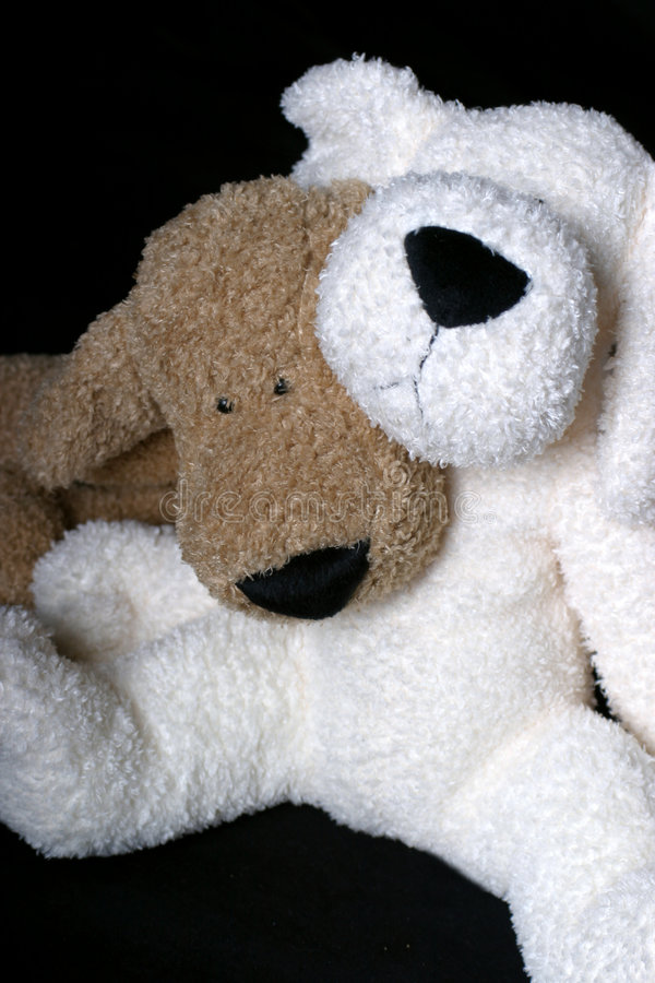 Puppy hug. Two stuff dog, a brown and a white, hugging each other royalty free stock photo