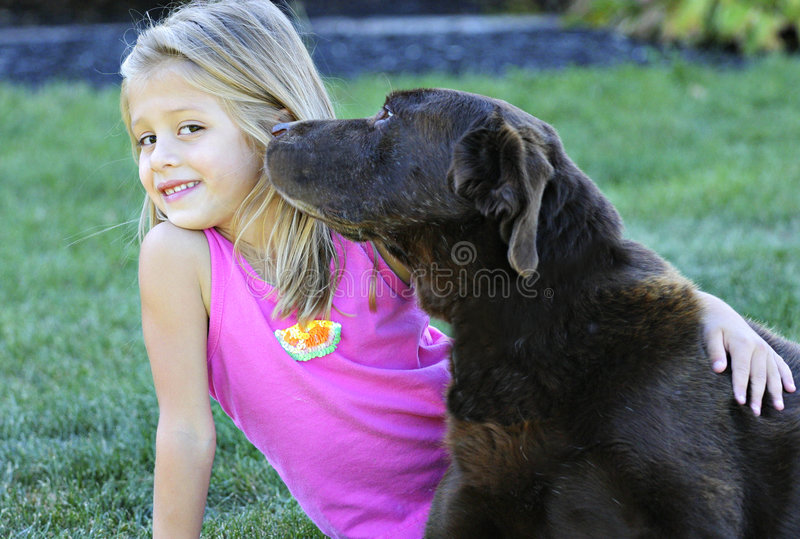 A puppy kiss royalty free stock photo