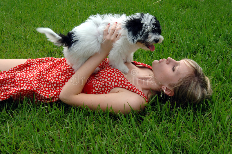 Download Puppy kisses stock image. Image of hold, friendship, kissing - 2631973